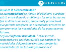 1. Sustentabilidad def