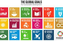 global goals genesis