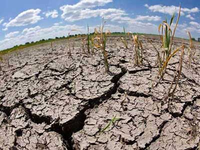 Governments Tackle Interlinked Challenges of Land Loss and Climate Change