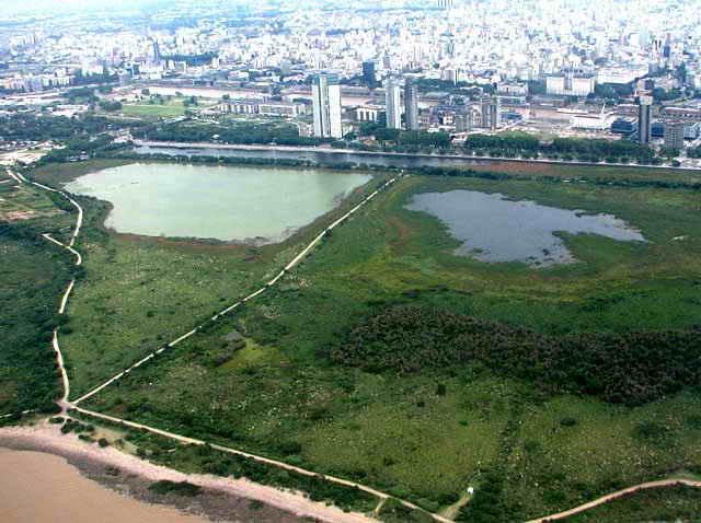 Los humedales urbanos son vitales para la protección del clima